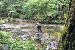 Нахлыст для начинающих 2: ловля в ручьях