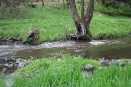 Tenkara near Carlsbad