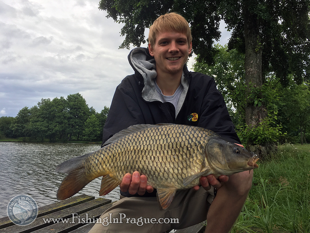 First 4 pounds common carp