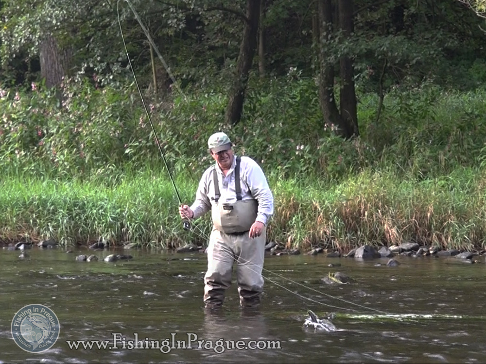 Fly fishing & tenkara in Czech Paradise