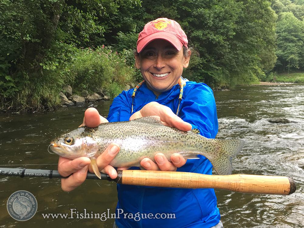 Rainbow trout on tenkara rod