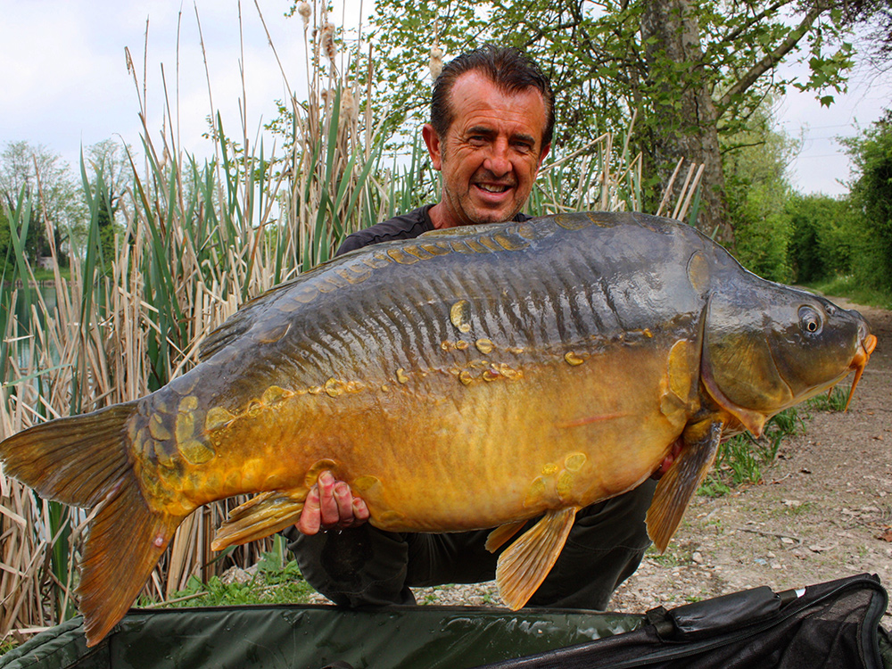Franck WARWICK and one of his outstanding catches of mirror carp