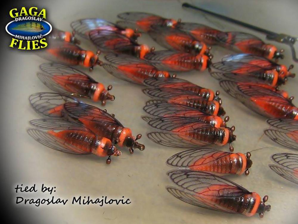 Stonefly by GAGA flies