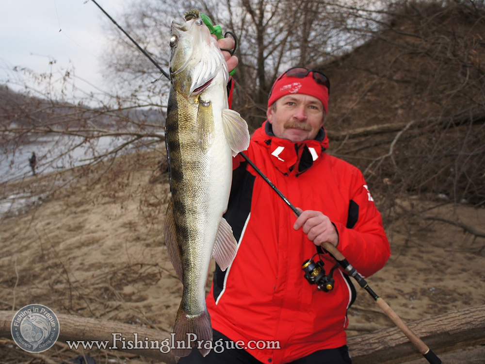 Konstantin Kuzmin, autumn walleye