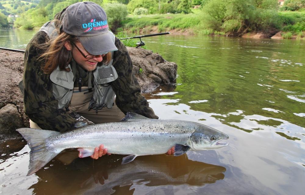 Salmon 17lbs,River Wye,Spinner