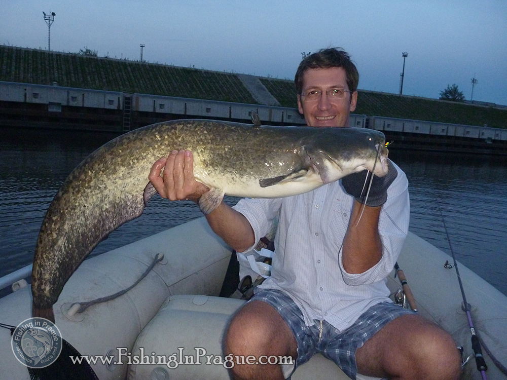 Outstanding young 35 pound catfish